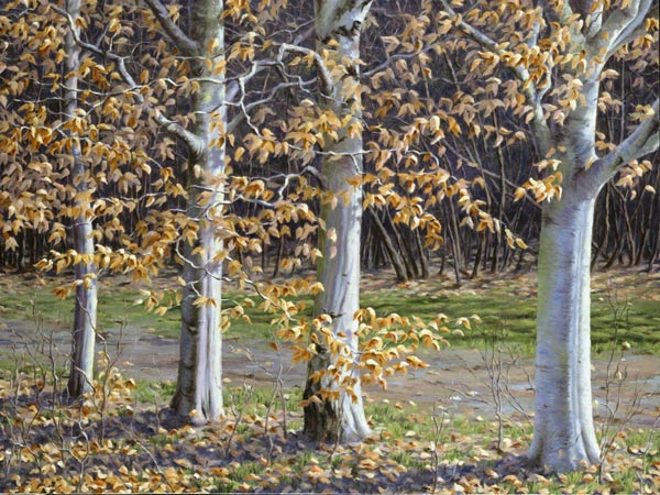 "Will Kefauver oil painting, ""Light Song, the Beeches"""