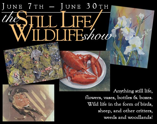 2019 Stillife/Wild Life Show graphic