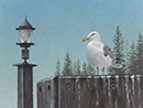 "Will Kefauver oil painting, ""Lampost"""