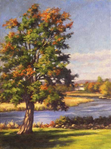Tree by the Lieutenant River, Old Lyme Connecticut